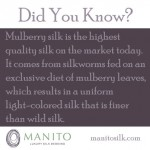 Did You Know? Why We Use Mulberry Silk