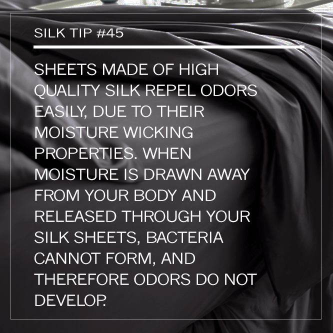 Manito Silk | Silk Pillowcase |Silk Sheets | Mulberry Silk | Silk Bedding | Silk Bed Sheets | Best Silk Sheets | Real Silk Sheets | Silk Sheet Sets | Silk Bedding Sets | Silk Sheets Queen | Silk Sheets King | 100% Silk Sheets | Luxury Silk Sheets | Silk Eye Mask | Silk Duvet | Silk Pillow